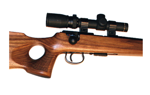 .17 hmr bolt-action rifle