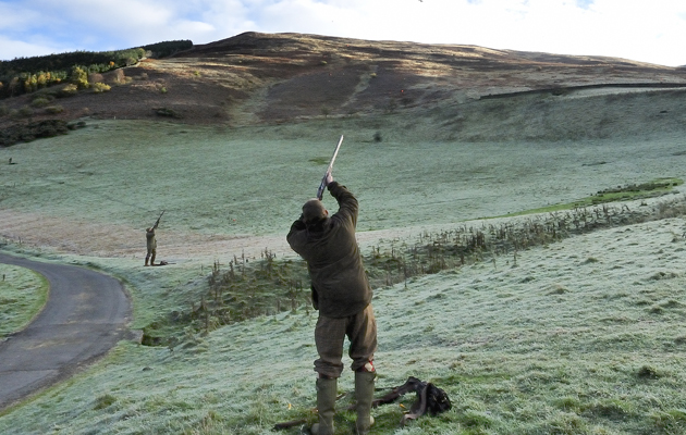 Bowhill shoot, Scottish Borders