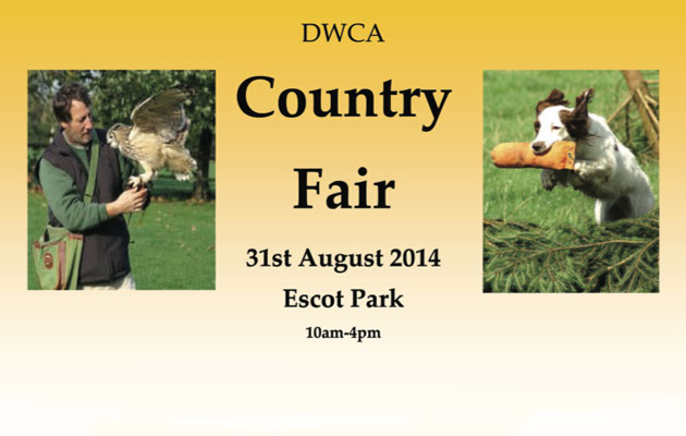 dwca county fair