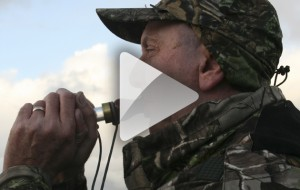 Wildfowling calls