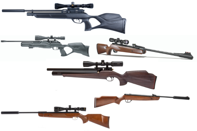 Which are the best air rifles for shooting rabbits