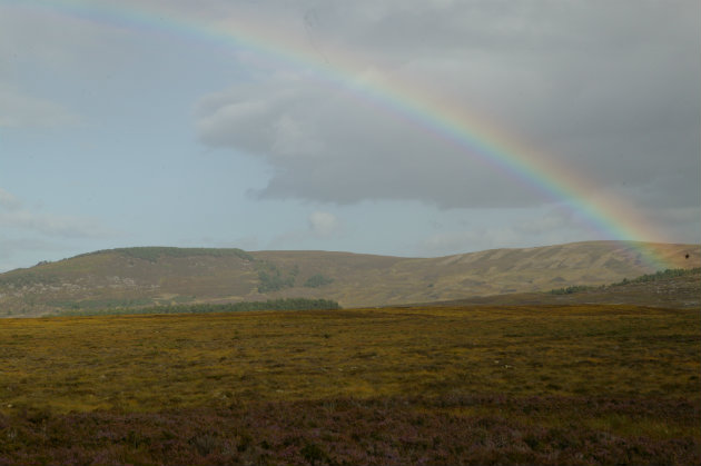 Concerns over Scotland's Land Reform Bill