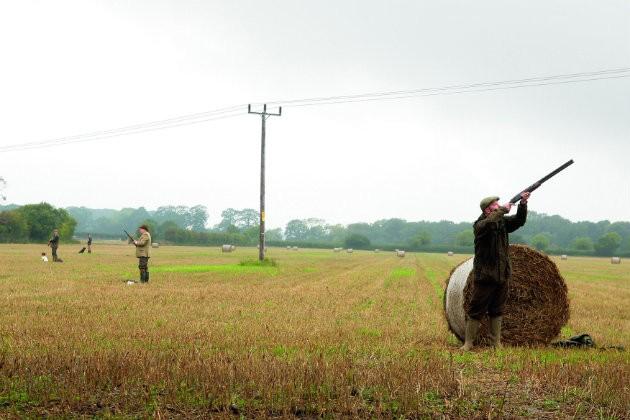Wappenshall partridge shoot