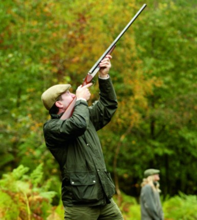 pheasant shooting technique