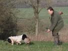 Shooting UK Gundog Training Masterclass 1