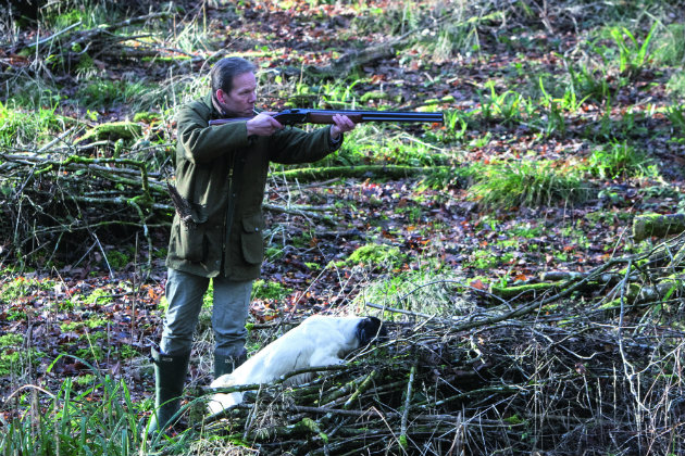 How to shoot over your dog - Shooting UK