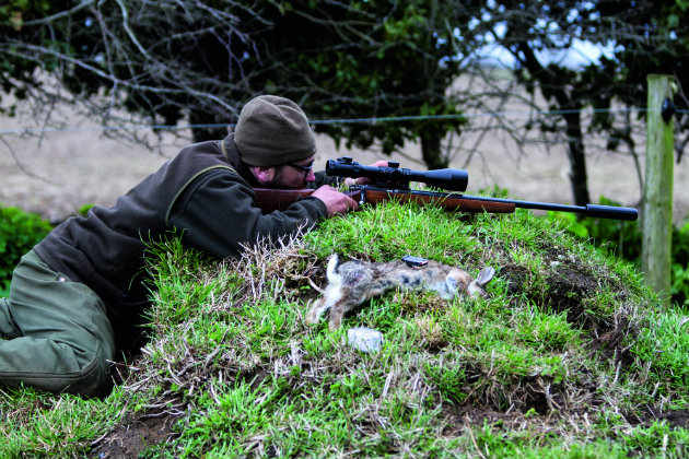 Brno Model 2 review - a no-nonsense pest control rifle