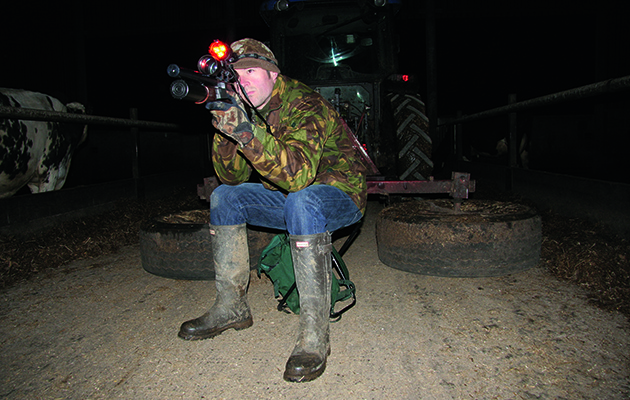 How to use an airgun for rat control