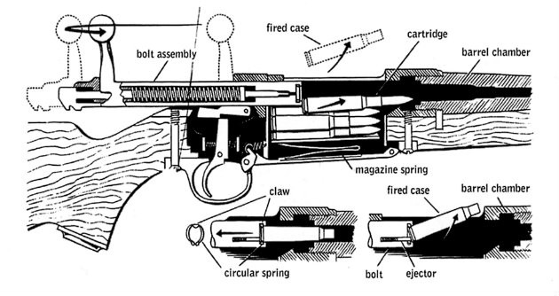 Internal view of a rifle