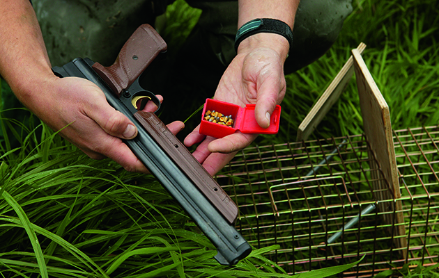 Traps For Pest Control How To Use Them Effectively And Legally