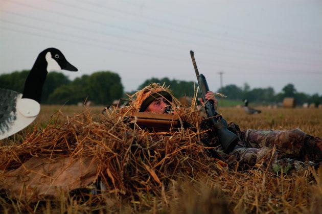 wildfowling in field