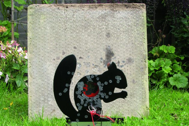 Effective pest control with an airgun - Shooting UK