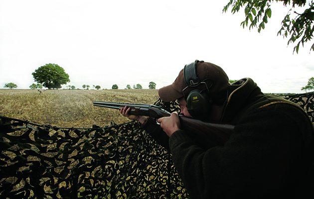 pigeon shooting technique