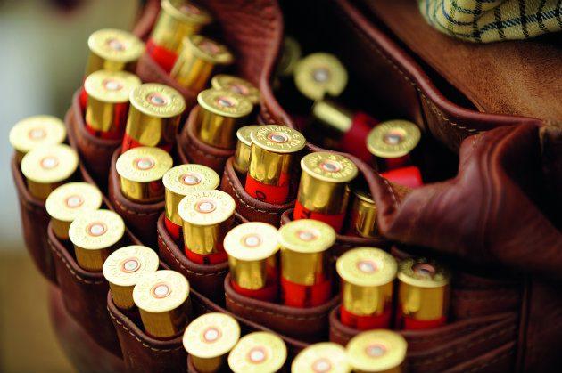 Cartridges in belt