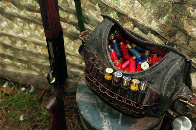 Pigeon cartridges
