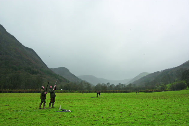 20 of the best UK pheasant shoots - Shooting UK