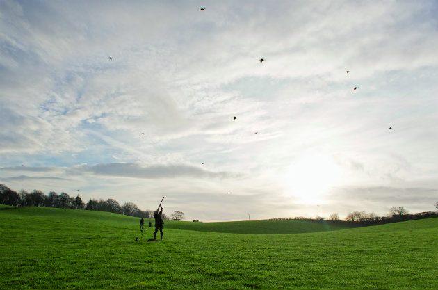 game shooting at sunset