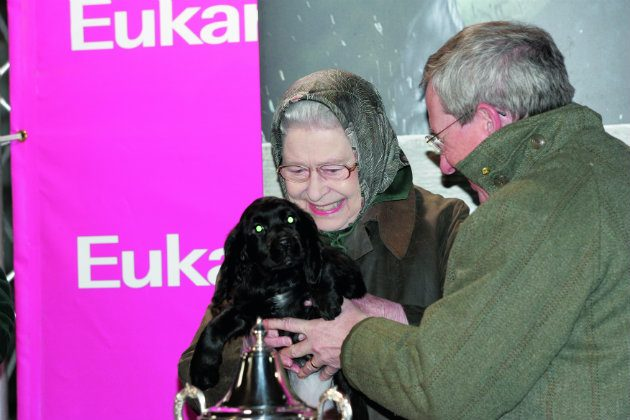 Queen with spaniel