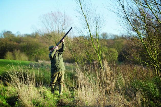 Late-season driven shooting