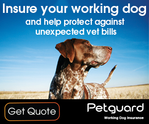 Insure your working dogs