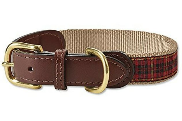 Tartan Dog Collar Amazon