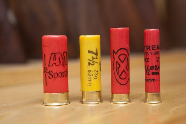 shotgun cartridges in different bores