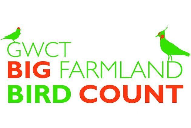 Big Farmland Bird Count back for 2019