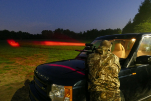 Night shot with air rifle