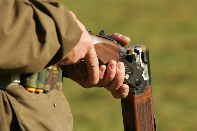 borrowing and lending shotguns law