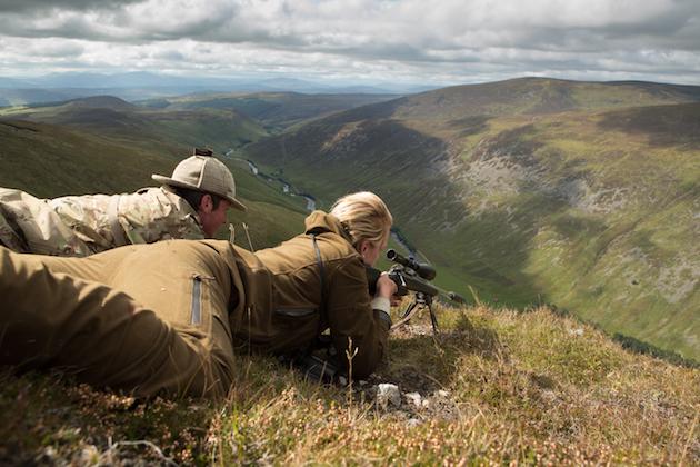 Czech hunter 223