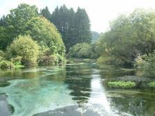 Hamurana Stream