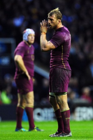 Key man: Robshaw leads from the front