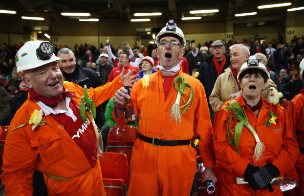 Passionate: Wales fans are confused at latest wrangle