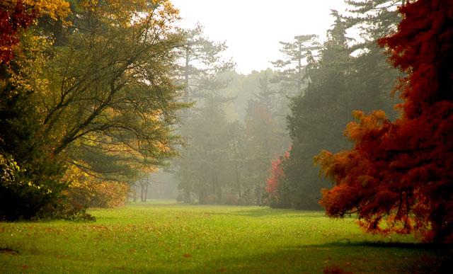 Best autumn gardens to visit UK