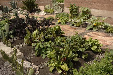 Best Show Garden Chelsea 2007