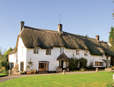 thatched cottage in devon for sale