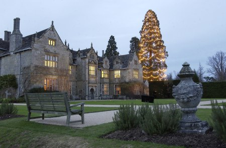 wakehurst christmas tree with house