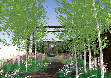 Robert Myers' garden