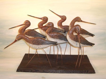 Prayer of Godwits by Judith Nicholl