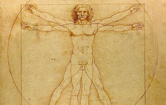 The Vitruvian Man by Leonardo da Vinci
