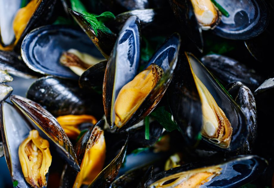 Close up shot of cooked blue mussels