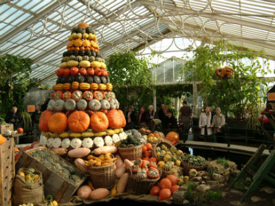 Kew Gardens To Unveil Towering Pyramid Of Pumpkins In London