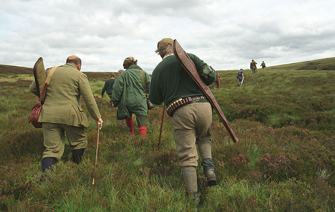 Grouse shooting in the Scottish Highlands