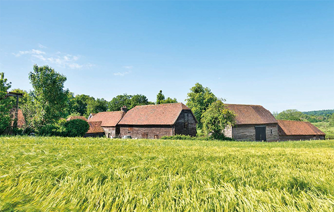 hampshire farm with woodland for sale feature