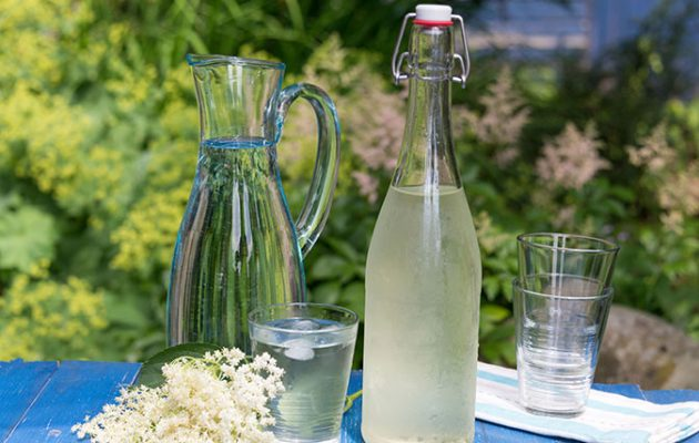 Elderflower cordial - home made