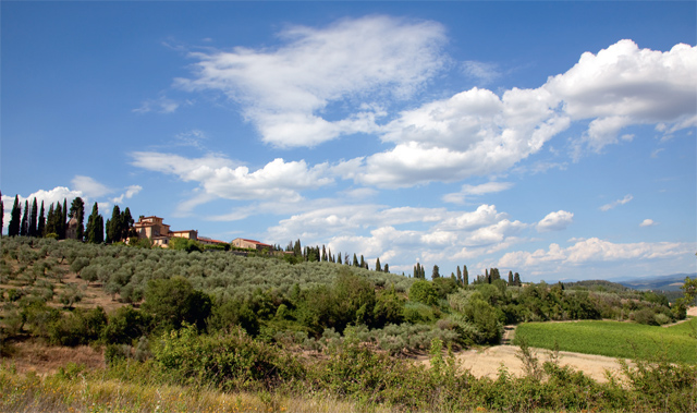 Buying farmland in Italy