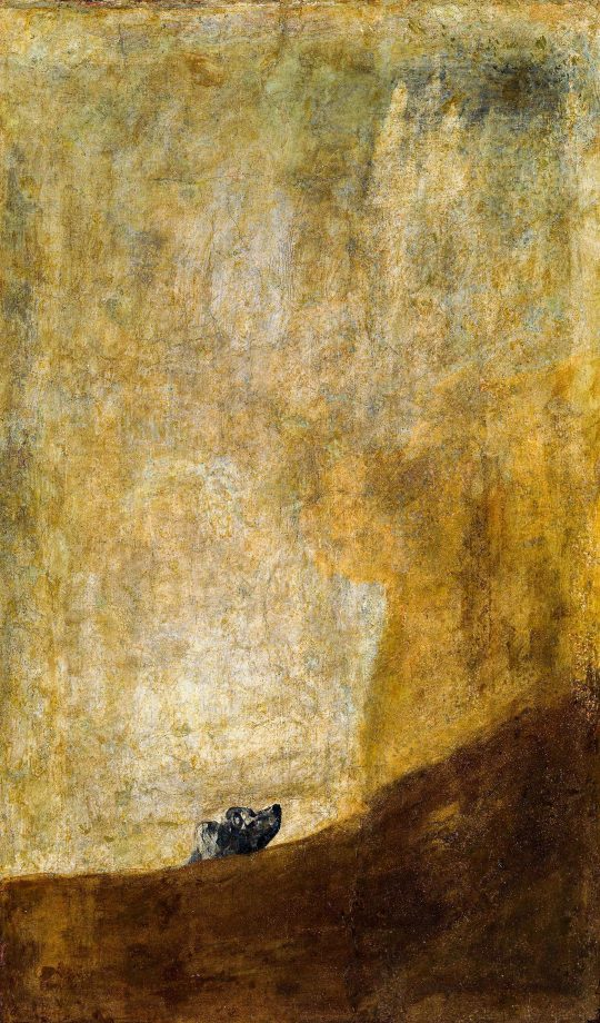 The Dog, about 1820/23, by Francisco Goya (1746–1828), Prado Museum, Madrid.