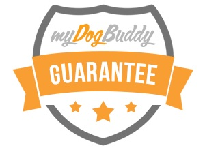 Find dogsitters online
