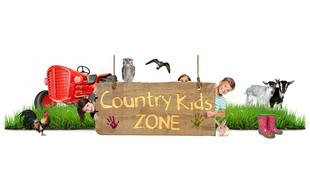 country life fair for children