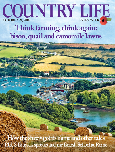 Country Life October 29 2014